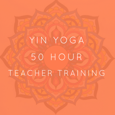 Yoga Hero Yin Yoga Teacher Training