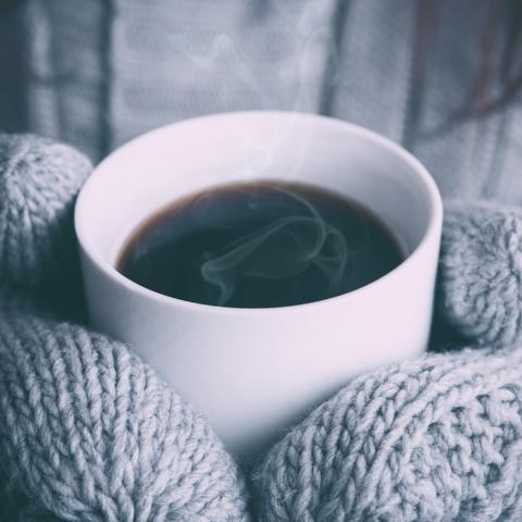 Winter Warmer Yoga Day Retreat