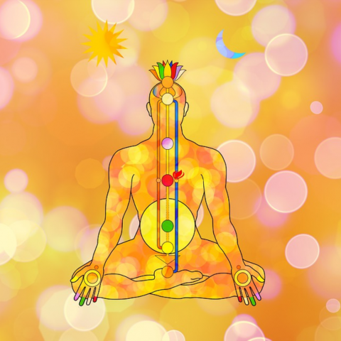 Knowledge Hero Chakras
