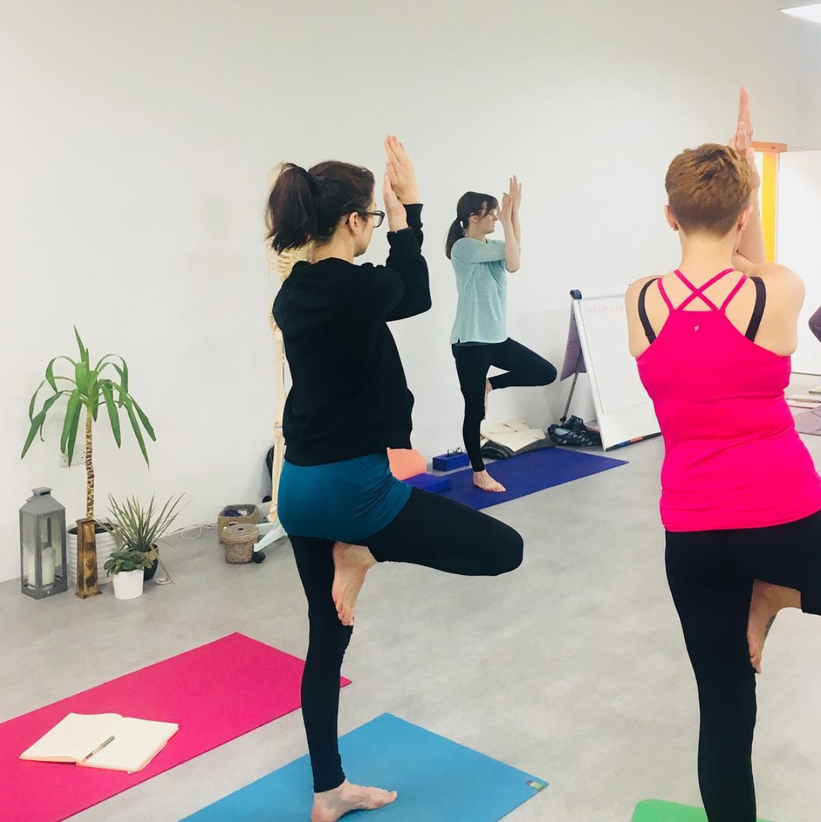 Flow and Breathe Yoga